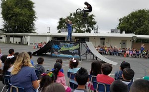 BMX Assembly - article thumnail image